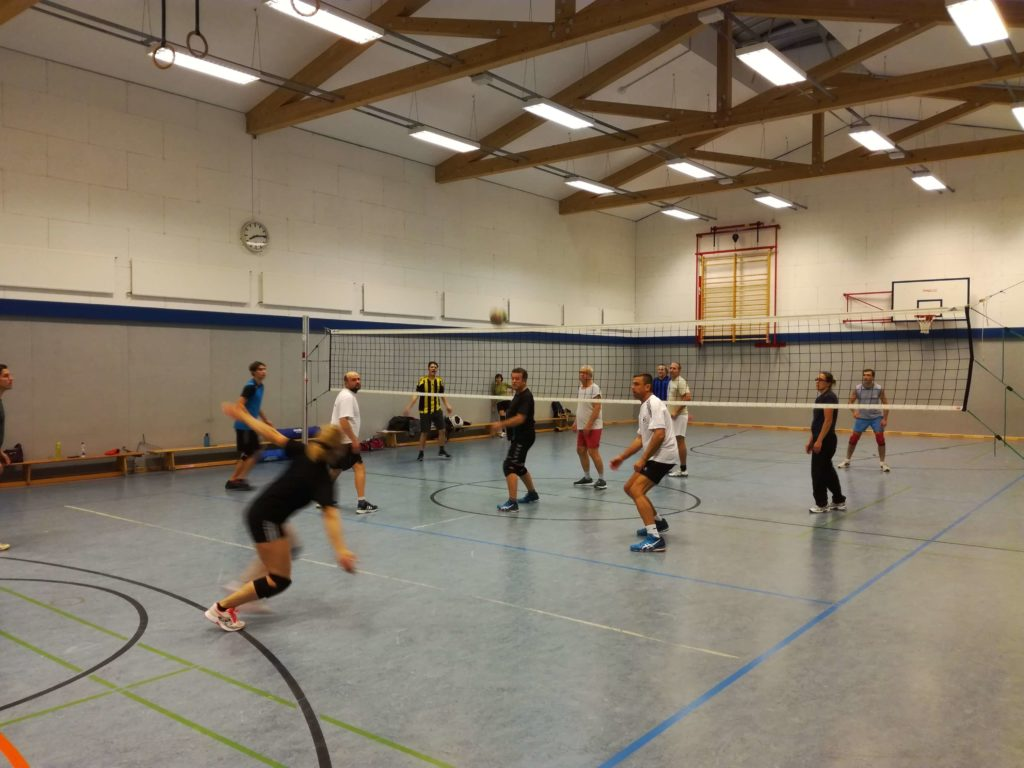 Volleyball Sportfreunde Grande-Kuddewörde